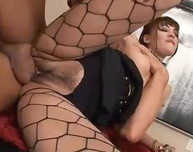 Jade Hsu has her Asian pussy pumped full of prick in her fishnet tights